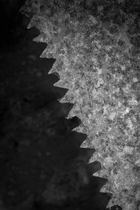 An old saw blade