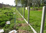North side fence posts